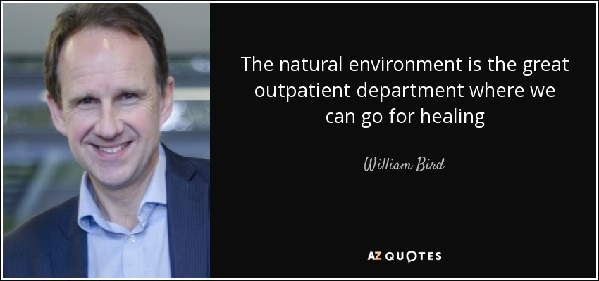 The natural environment is the great outpatient department where we can go for healing - William Bird