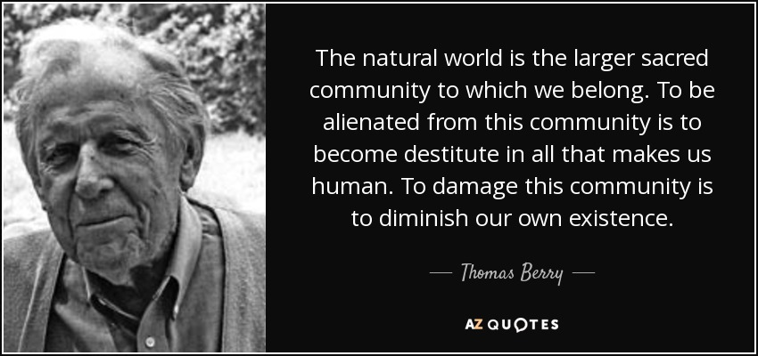 The natural world is the larger sacred community to which we belong. To be alienated from this community is to become destitute in all that makes us human. To damage this community is to diminish our own existence. - Thomas Berry