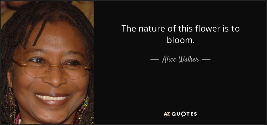 The nature of this flower is to bloom. - Alice Walker