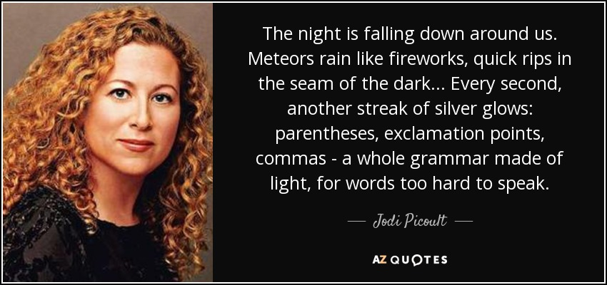 The night is falling down around us. Meteors rain like fireworks, quick rips in the seam of the dark... Every second, another streak of silver glows: parentheses, exclamation points, commas - a whole grammar made of light, for words too hard to speak. - Jodi Picoult