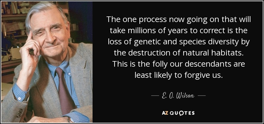 The one process now going on that will take millions of years to correct is the loss of genetic and species diversity by the destruction of natural habitats. This is the folly our descendants are least likely to forgive us. - E. O. Wilson