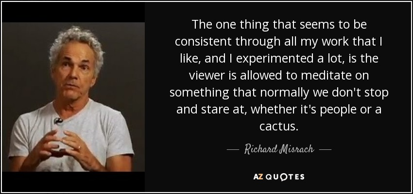 The one thing that seems to be consistent through all my work that I like, and I experimented a lot, is the viewer is allowed to meditate on something that normally we don't stop and stare at, whether it's people or a cactus. - Richard Misrach