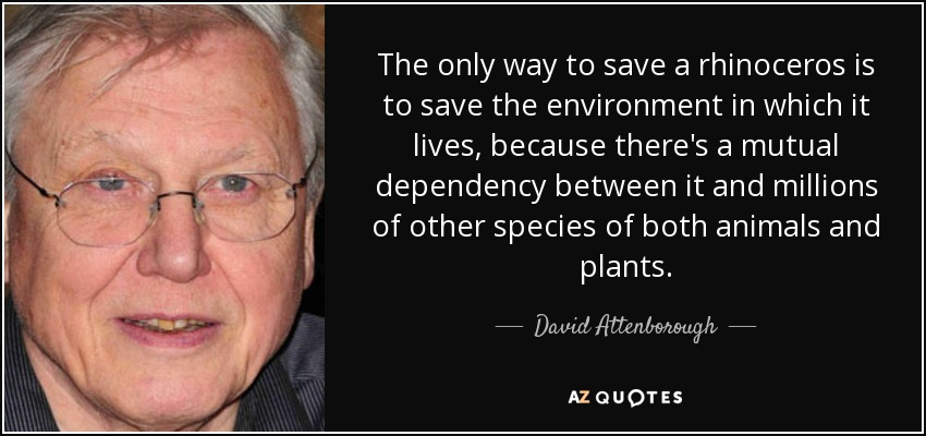 The only way to save a rhinoceros is to save the environment in which it lives, because there's a mutual dependency between it and millions of other species of both animals and plants. - David Attenborough