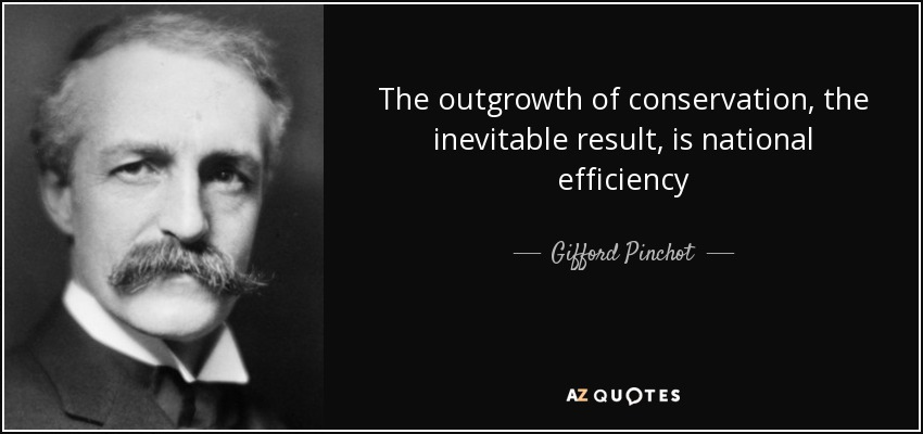 The outgrowth of conservation, the inevitable result, is national efficiency - Gifford Pinchot