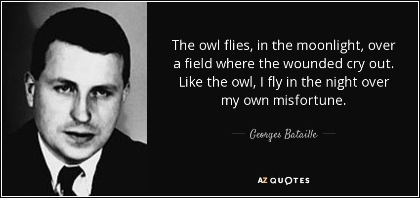 The owl flies, in the moonlight, over a field where the wounded cry out. Like the owl, I fly in the night over my own misfortune. - Georges Bataille