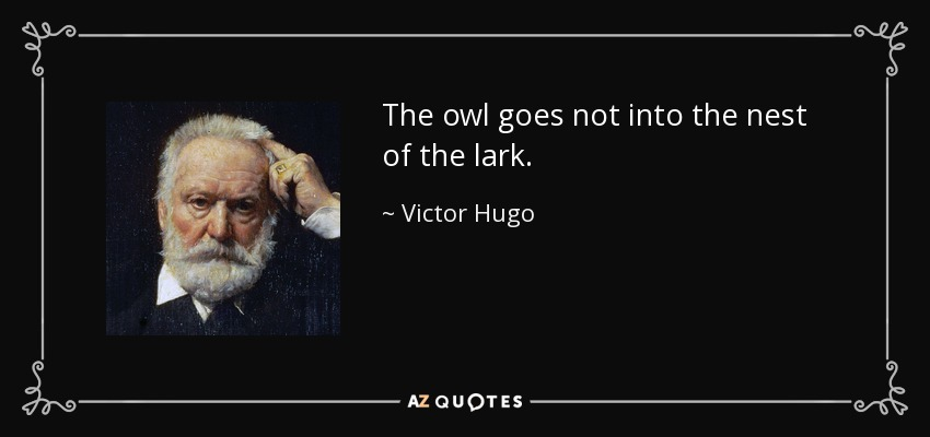 The owl goes not into the nest of the lark. - Victor Hugo