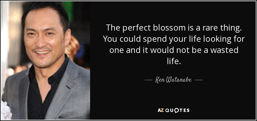 The perfect blossom is a rare thing. You could spend your life looking for one and it would not be a wasted life. - Ken Watanabe