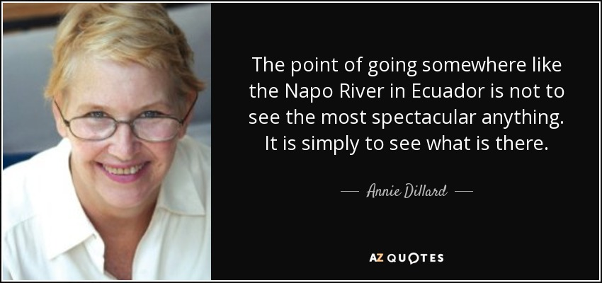 The point of going somewhere like the Napo River in Ecuador is not to see the most spectacular anything. It is simply to see what is there. - Annie Dillard