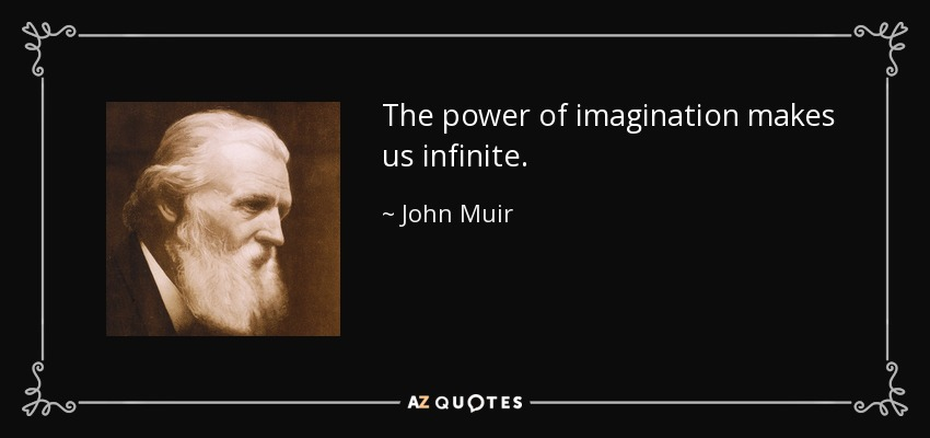The power of imagination makes us infinite. - John Muir