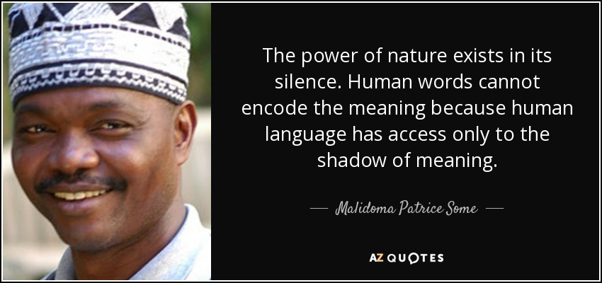The power of nature exists in its silence. Human words cannot encode the meaning because human language has access only to the shadow of meaning. - Malidoma Patrice Some