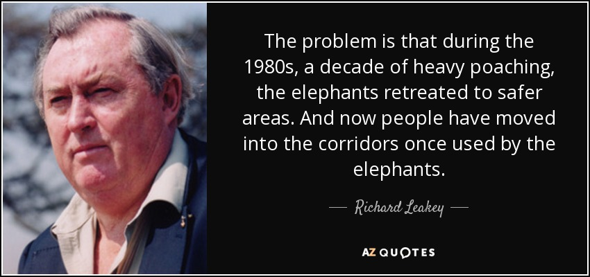 The problem is that during the 1980s, a decade of heavy poaching, the elephants retreated to safer areas. And now people have moved into the corridors once used by the elephants. - Richard Leakey