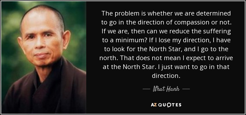 The problem is whether we are determined to go in the direction of compassion or not. If we are, then can we reduce the suffering to a minimum? If I lose my direction, I have to look for the North Star, and I go to the north. That does not mean I expect to arrive at the North Star. I just want to go in that direction. - Nhat Hanh