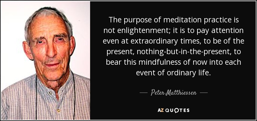 The purpose of meditation practice is not enlightenment; it is to pay attention even at extraordinary times, to be of the present, nothing-but-in-the-present, to bear this mindfulness of now into each event of ordinary life. - Peter Matthiessen