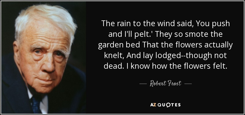 The rain to the wind said, You push and I'll pelt.' They so smote the garden bed That the flowers actually knelt, And lay lodged--though not dead. I know how the flowers felt. - Robert Frost