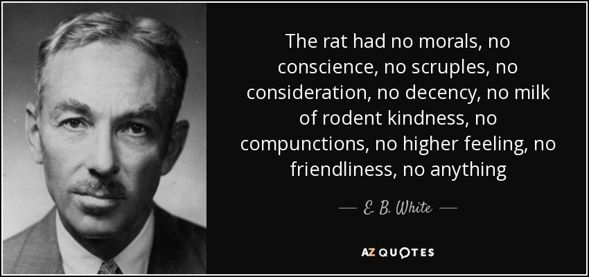 The rat had no morals, no conscience, no scruples, no consideration, no decency, no milk of rodent kindness, no compunctions, no higher feeling, no friendliness, no anything - E. B. White