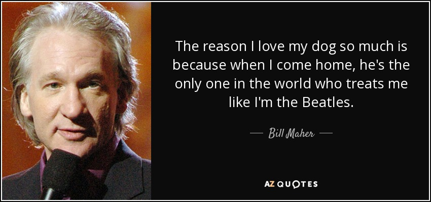 The reason I love my dog so much is because when I come home, he's the only one in the world who treats me like I'm the Beatles. - Bill Maher
