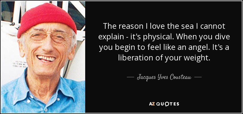 The reason I love the sea I cannot explain - it's physical. When you dive you begin to feel like an angel. It's a liberation of your weight. - Jacques Yves Cousteau