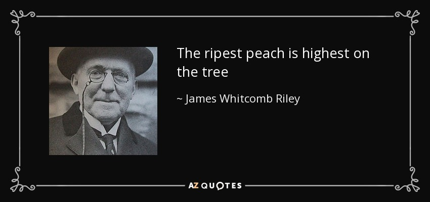 The ripest peach is highest on the tree - James Whitcomb Riley