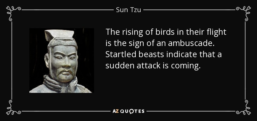 The rising of birds in their flight is the sign of an ambuscade. Startled beasts indicate that a sudden attack is coming. - Sun Tzu