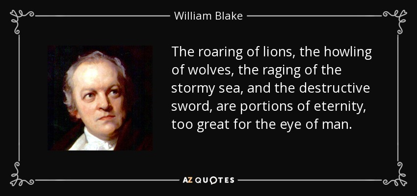 The roaring of lions, the howling of wolves, the raging of the stormy sea, and the destructive sword, are portions of eternity, too great for the eye of man. - William Blake