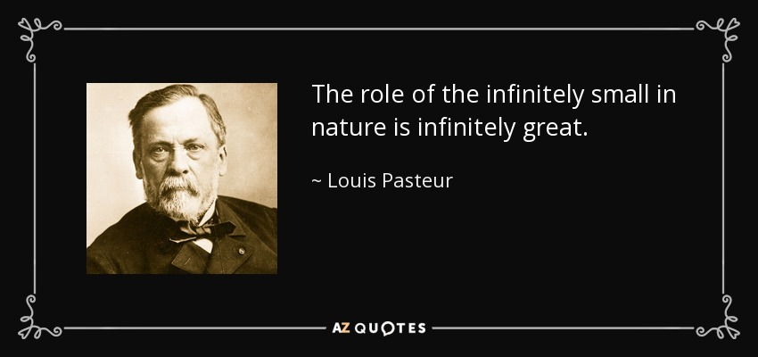 The role of the infinitely small in nature is infinitely great. - Louis Pasteur