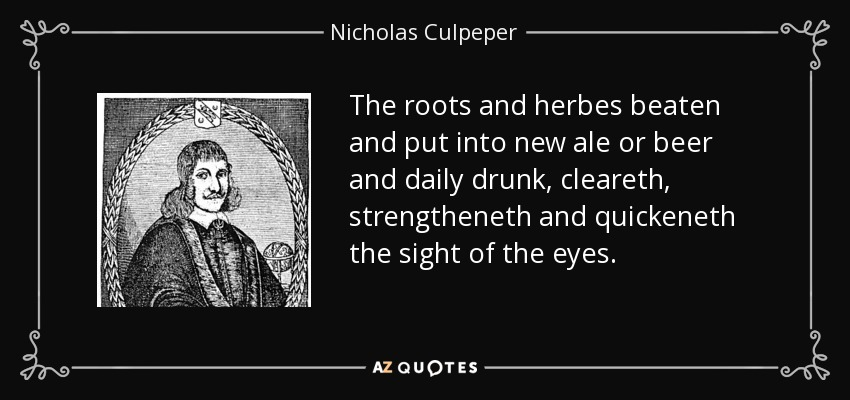 The roots and herbes beaten and put into new ale or beer and daily drunk, cleareth, strengtheneth and quickeneth the sight of the eyes. - Nicholas Culpeper