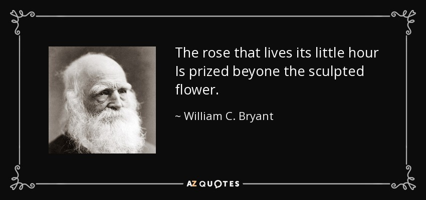 The rose that lives its little hour Is prized beyone the sculpted flower. - William C. Bryant