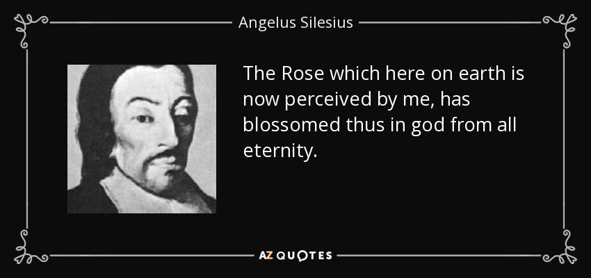 The Rose which here on earth is now perceived by me, has blossomed thus in god from all eternity. - Angelus Silesius