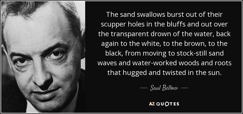 The sand swallows burst out of their scupper holes in the bluffs and out over the transparent drown of the water, back again to the white, to the brown, to the black, from moving to stock-still sand waves and water-worked woods and roots that hugged and twisted in the sun. - Saul Bellow