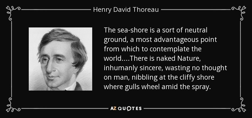 The sea-shore is a sort of neutral ground, a most advantageous point from which to contemplate the world....There is naked Nature, inhumanly sincere, wasting no thought on man, nibbling at the cliffy shore where gulls wheel amid the spray. - Henry David Thoreau