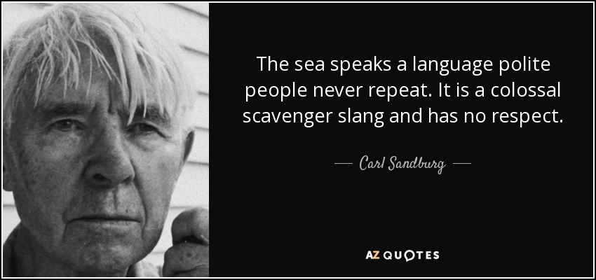 The sea speaks a language polite people never repeat. It is a colossal scavenger slang and has no respect. - Carl Sandburg