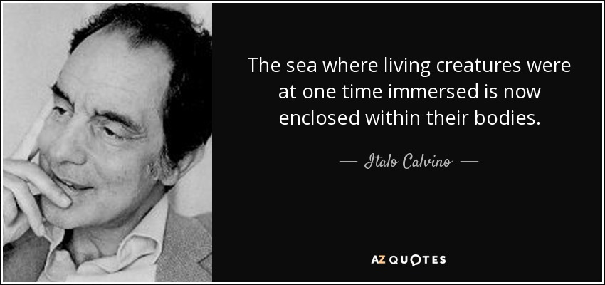 The sea where living creatures were at one time immersed is now enclosed within their bodies. - Italo Calvino