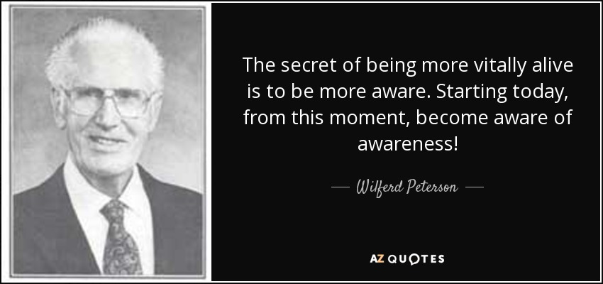 The secret of being more vitally alive is to be more aware. Starting today, from this moment, become aware of awareness! - Wilferd Peterson