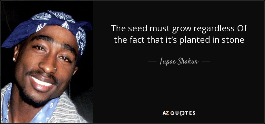 The seed must grow regardless Of the fact that it's planted in stone - Tupac Shakur