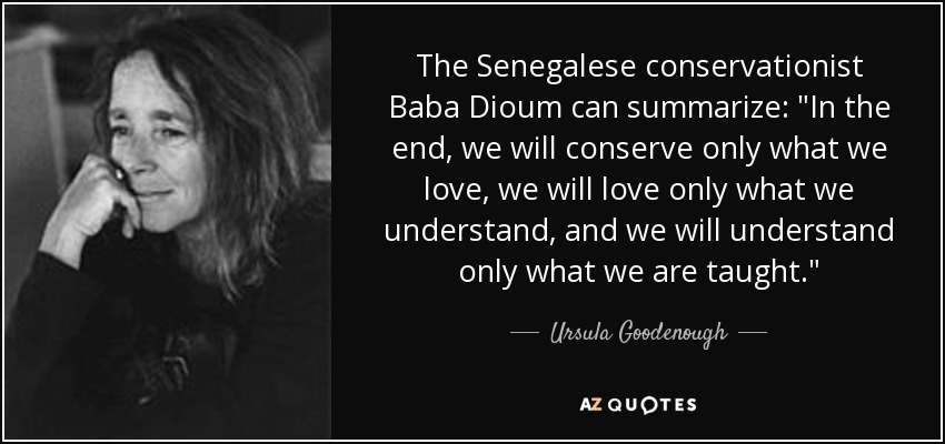 The Senegalese conservationist Baba Dioum can summarize: