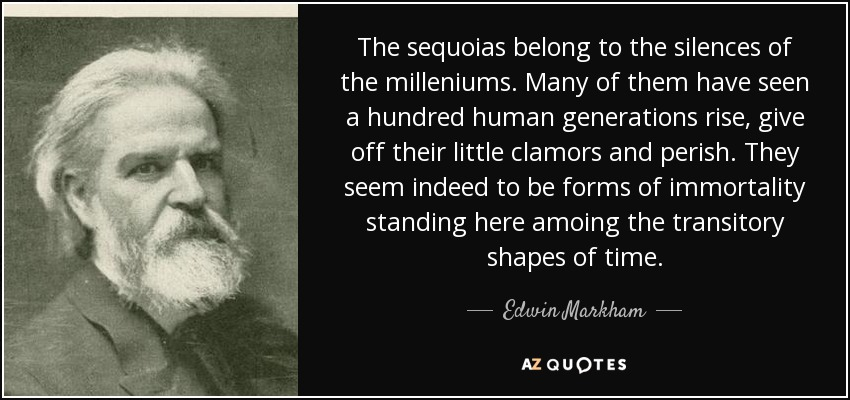 The sequoias belong to the silences of the milleniums. Many of them have seen a hundred human generations rise, give off their little clamors and perish. They seem indeed to be forms of immortality standing here amoing the transitory shapes of time. - Edwin Markham