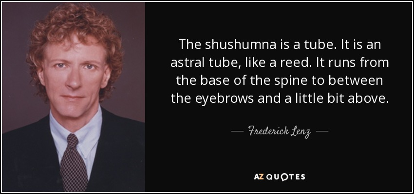The shushumna is a tube. It is an astral tube, like a reed. It runs from the base of the spine to between the eyebrows and a little bit above. - Frederick Lenz