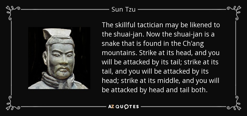 The skillful tactician may be likened to the shuai-jan. Now the shuai-jan is a snake that is found in the Ch'ang mountains. Strike at its head, and you will be attacked by its tail; strike at its tail, and you will be attacked by its head; strike at its middle, and you will be attacked by head and tail both. - Sun Tzu