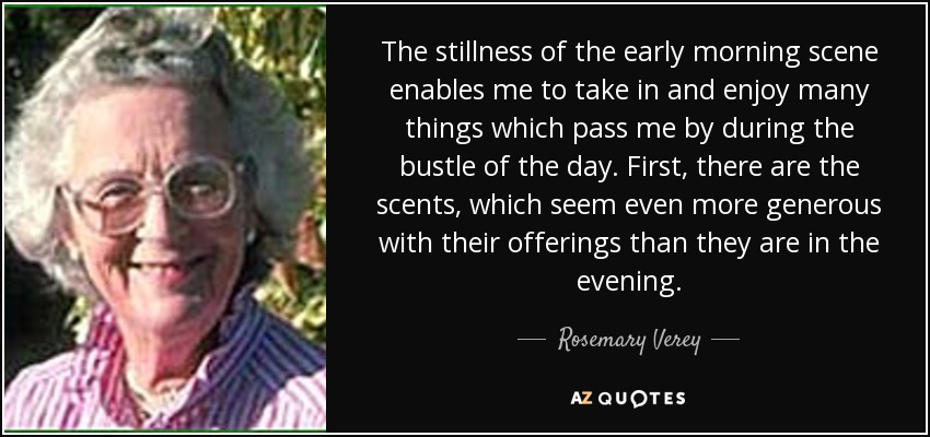 The stillness of the early morning scene enables me to take in and enjoy many things which pass me by during the bustle of the day. First, there are the scents, which seem even more generous with their offerings than they are in the evening. - Rosemary Verey