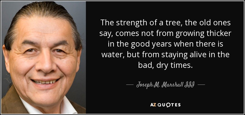 The strength of a tree, the old ones say, comes not from growing thicker in the good years when there is water, but from staying alive in the bad, dry times. - Joseph M. Marshall III