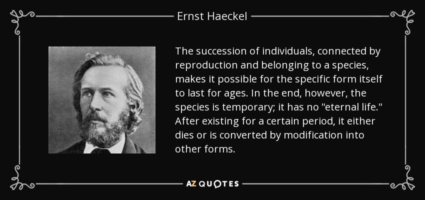 The succession of individuals, connected by reproduction and belonging to a species, makes it possible for the specific form itself to last for ages. In the end, however, the species is temporary; it has no