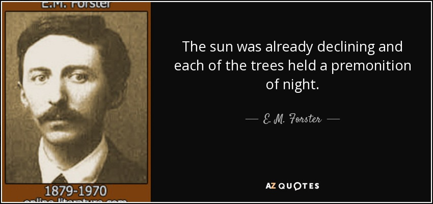 The sun was already declining and each of the trees held a premonition of night. - E. M. Forster