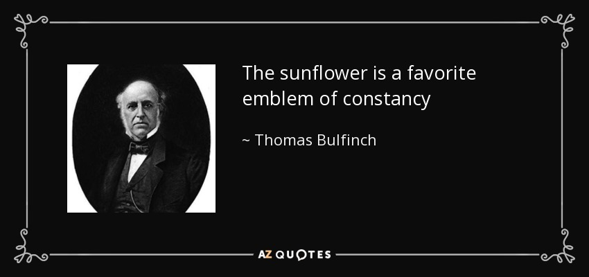 The sunflower is a favorite emblem of constancy - Thomas Bulfinch