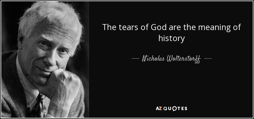 The tears of God are the meaning of history - Nicholas Wolterstorff