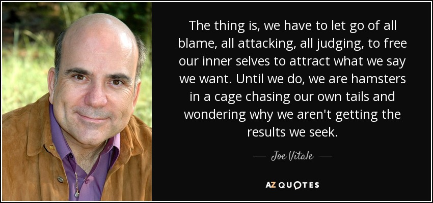 The thing is, we have to let go of all blame, all attacking, all judging, to free our inner selves to attract what we say we want. Until we do, we are hamsters in a cage chasing our own tails and wondering why we aren't getting the results we seek. - Joe Vitale