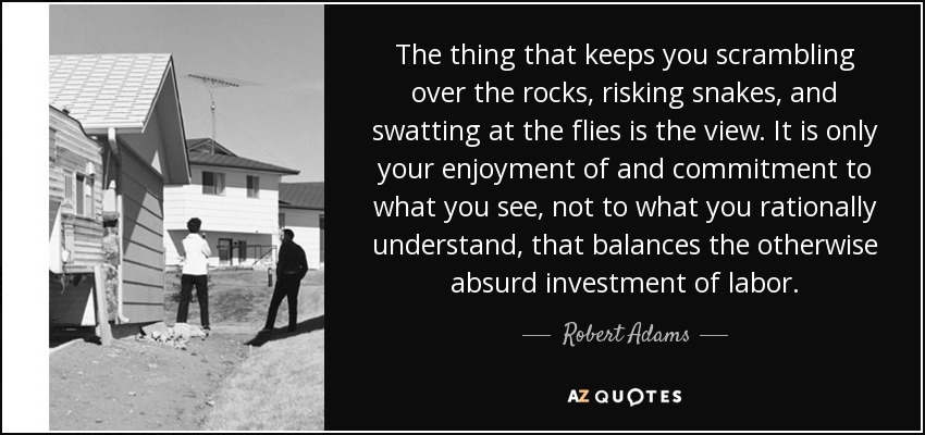 The thing that keeps you scrambling over the rocks, risking snakes, and swatting at the flies is the view. It is only your enjoyment of and commitment to what you see, not to what you rationally understand, that balances the otherwise absurd investment of labor. - Robert Adams