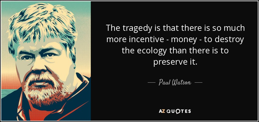 The tragedy is that there is so much more incentive - money - to destroy the ecology than there is to preserve it. - Paul Watson