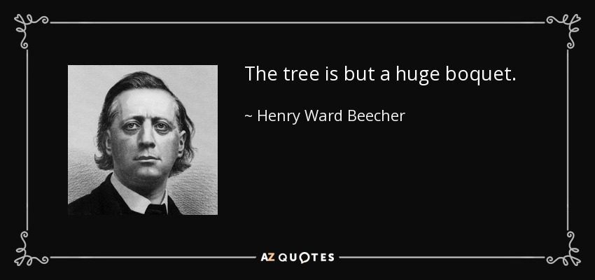 The tree is but a huge boquet. - Henry Ward Beecher