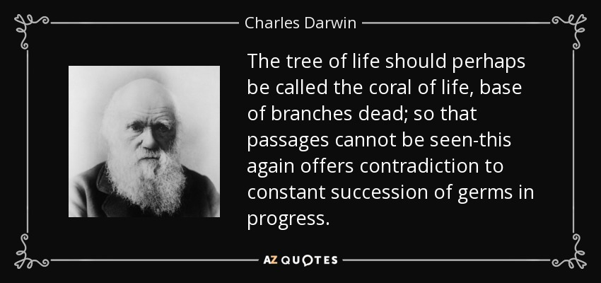 The tree of life should perhaps be called the coral of life, base of branches dead; so that passages cannot be seen-this again offers contradiction to constant succession of germs in progress. - Charles Darwin