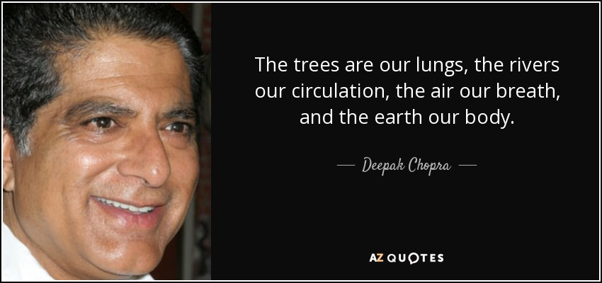 The trees are our lungs, the rivers our circulation, the air our breath, and the earth our body. - Deepak Chopra